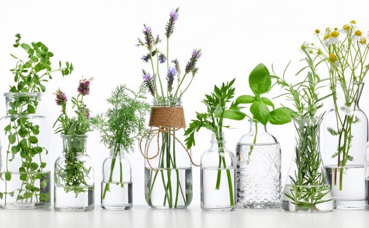 essential-oil-with-herbs
