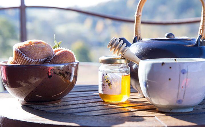 gouter-miel-bio-ruche-07